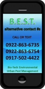 Bio-Tech Termite Control Philippines Alternative contact numbers